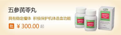 五参芪苓丸(具有稳定瘤体、积极保护机体造血功能)